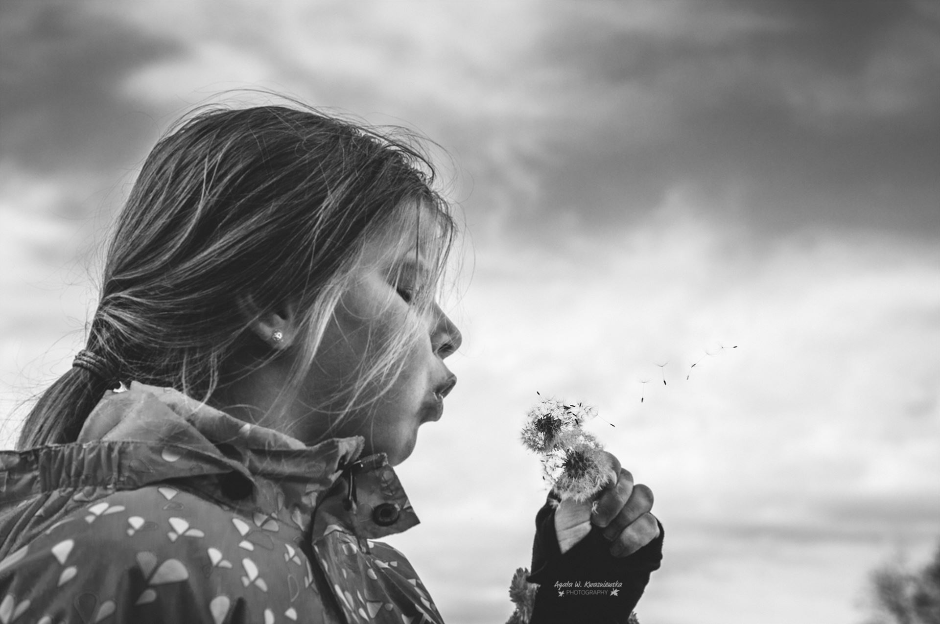 Fly, fly away! -  by Agata W. Kwasniewska Photography