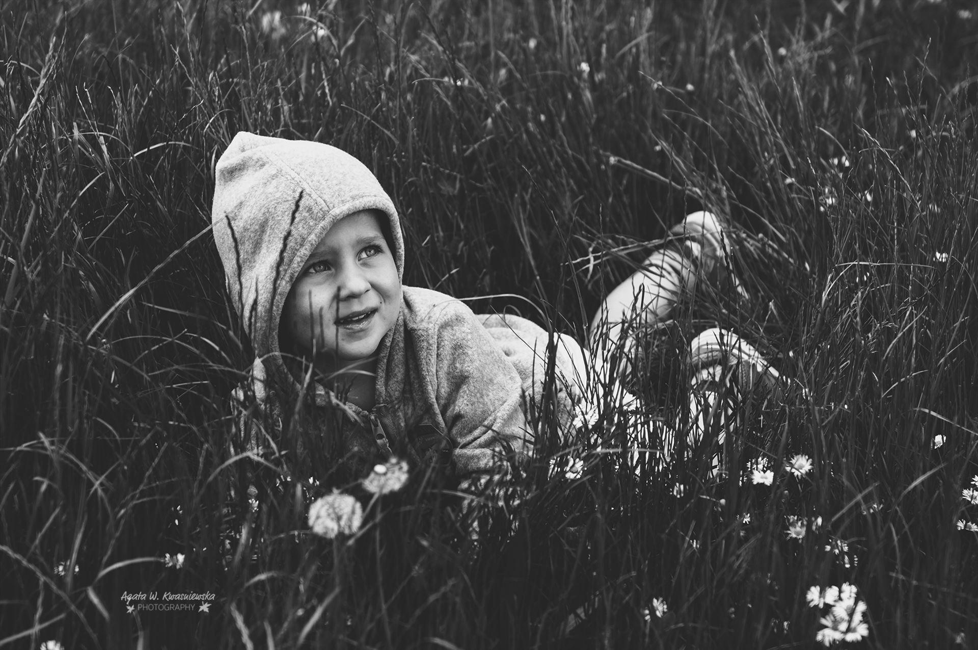 In the grass -  by Agata W. Kwasniewska Photography